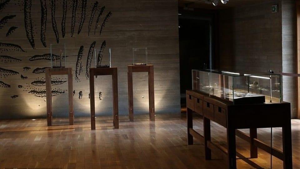 Archeopark Pavlov,  foto: Archiv muzea v Mikulově