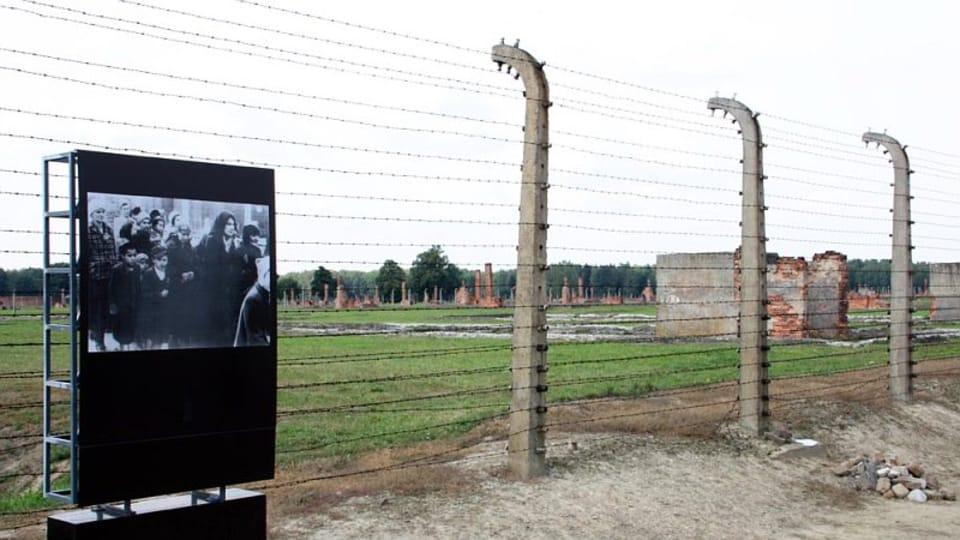 Tábor Osvětim - Březinka,  kde bylo v noci z 2. na 3. srpna 1944 zavražděno téměř 3 000 Romů,  foto: Barbora Kmentová / Archiv ČRo 7