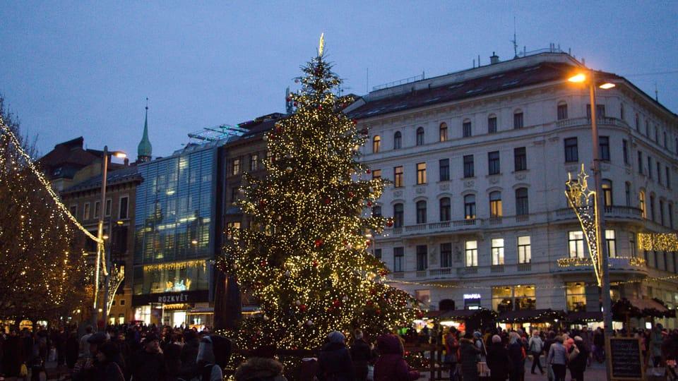 Vánoční strom v Brně,  foto: Ludmila Opltová