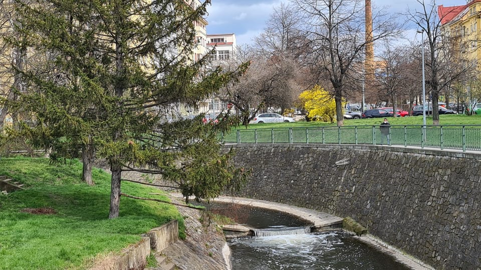 Rokytka v Libni | Foto: Klára Stejskalová,  Radio Prague International