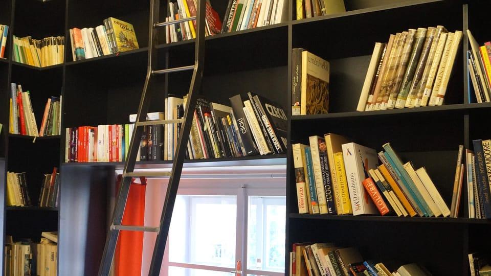 Žebřík v sousedské knihovně byl vyroben na míru a dá se s ním pohybovat po kolejnici po celém obvodu místnosti   Foto: Miloš Turek,  Radio Prague International