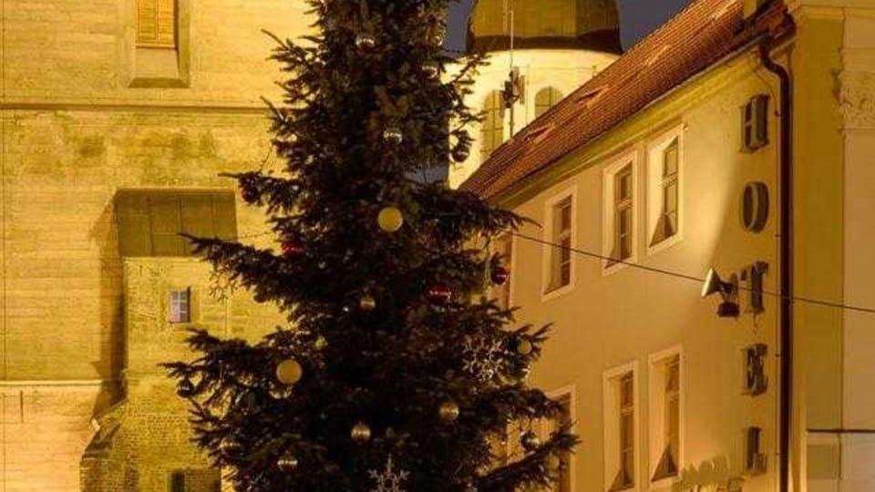Vánoční strom v Hradci Králové,  foto: Milan Baják