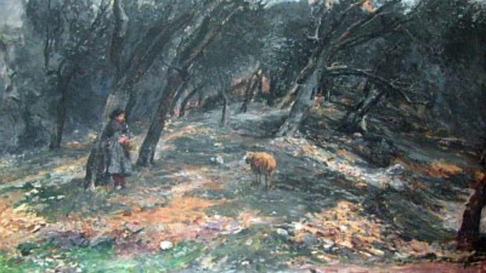 Olivový háj,  1896