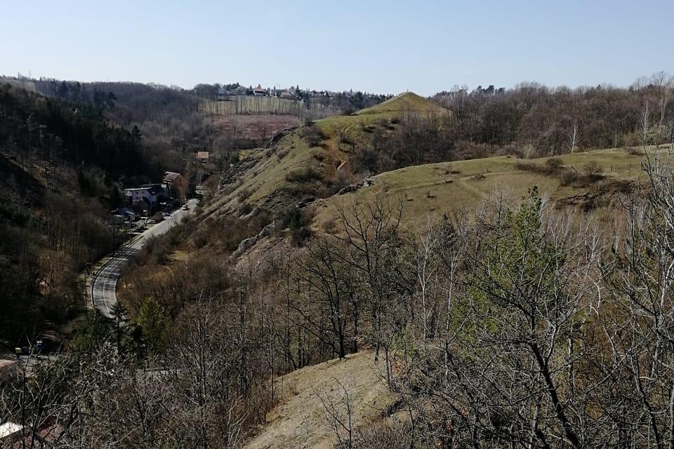 Přírodní rezervace Homolka,  foto: Štěpánka Budková